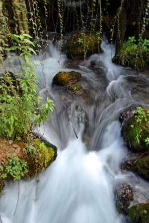 banias: Banias Water Stock Photo