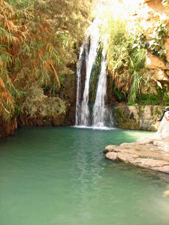 hideout: Spring of Ein Gedi, Israel