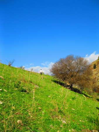Walking on the Hillside