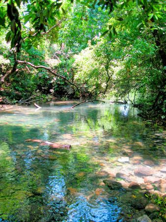 River in Tel Dan Israel