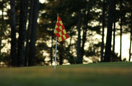 Checkered golf flag Stock Photo - 7627468