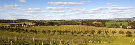 barossa: Gnadenfrei Lutheran Church in a view across the Barossa Valley South Australia