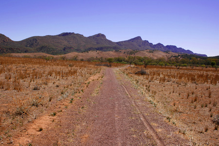 scrub grass: A dirt road in the desert landscape of the Flinders Ranges, South Australia Stock Photo