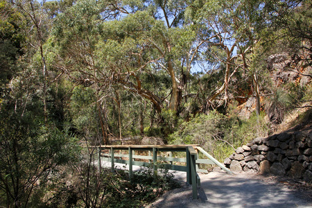 unspoilt: The beauty of the unspoilt Morialta conservation park in South Australia