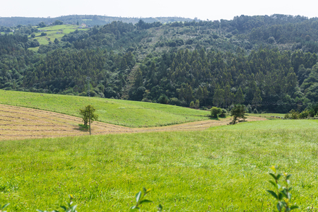 ields of meadows for cattle in the north of Spain, Asturias 写真素材