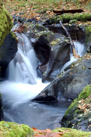 water fall with dead leaves around in autumn