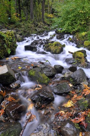 strong stream with autumn leaves