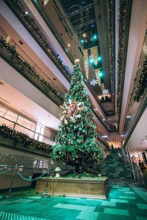 Christmas tree, Christmas, Christmas Eve, Christmas tree, Christmas