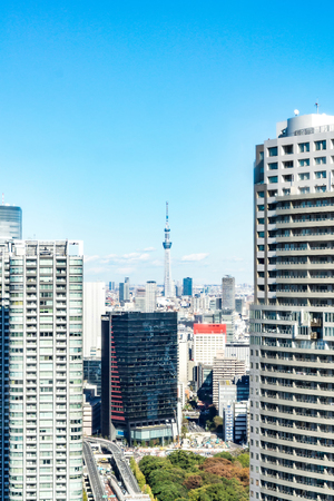 TOKYO, JAPAN - November 23, 2018: Tokyo skytree tower building, Asia business concept for real estate and corporate construction - panoramic urban city skyline aerial view under blue sky in hamamatsucho, tokyo, Japan