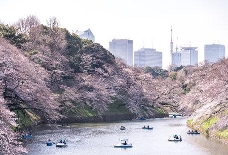CHIYODA, TOKYO PREFECTURE, JAPAN - March 27, 2019: Visitors enjoying the scenario surrounded by Chidori-ga-fuchi Moats cherry blossoms (sakura) on a rental boat ride. Sajtókép