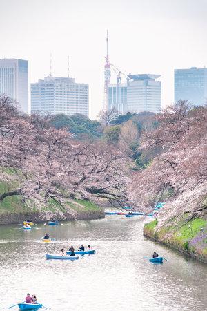 CHIYODA, TOKYO PREFECTURE, JAPAN - March 27, 2019: Visitors enjoying the scenario surrounded by Chidori-ga-fuchi Moat's cherry blossoms (sakura) on a rental boat ride. Editöryel