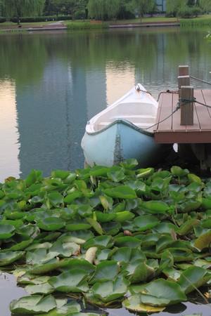 Lac de bateau quai
