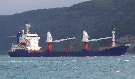 Cargo ship cruise in bosphorus strait