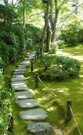 Narrow path in the garden