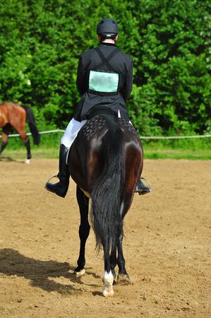 rider in horse show