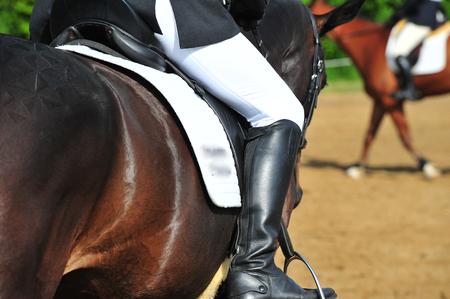 Horse contest Stock Photo - 112650750