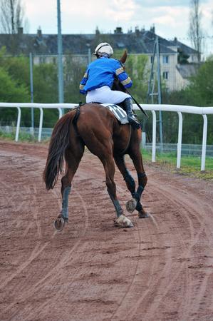 horse race Фото со стока