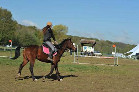 equestrian sport Banco de Imagens