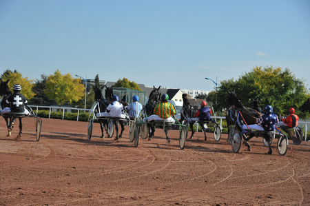 start of a horse race in sulky Stock Photo