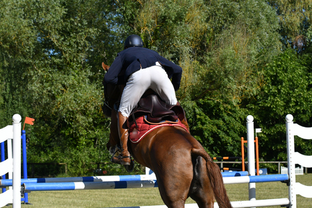 jumping in a horse show