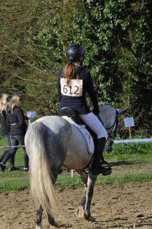 Horse contest Stock Photo - 121562728