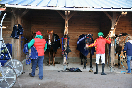 racehorses in their stables with their jockeys
