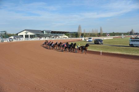 horse race in sulky Reklamní fotografie