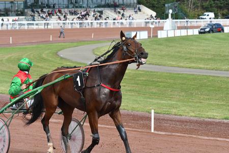 horse race in sulky