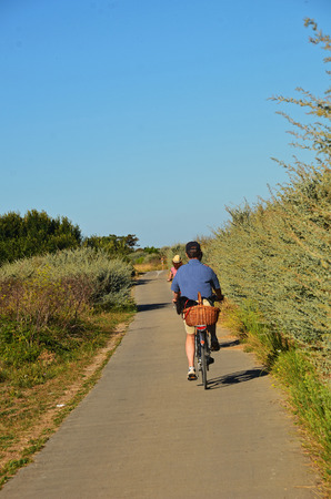 cyclist on a bike path on the island of Re - France Banco de Imagens