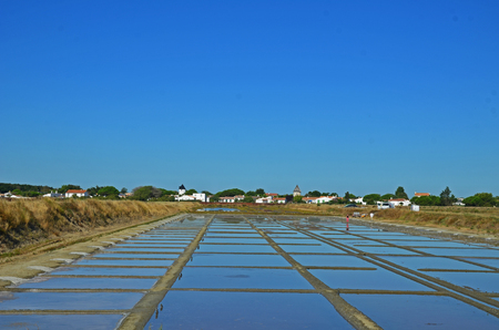 salt marsh on the island of Re - France Stock Photo