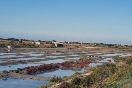 salt marsh on the island of Re-France Stock Photo