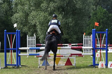 horse show with jumping Banco de Imagens