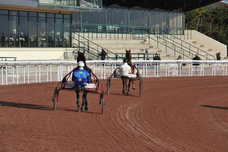 horse race in sulky Stockfoto - 124999233