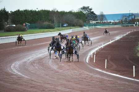 horse race in sulky Editorial