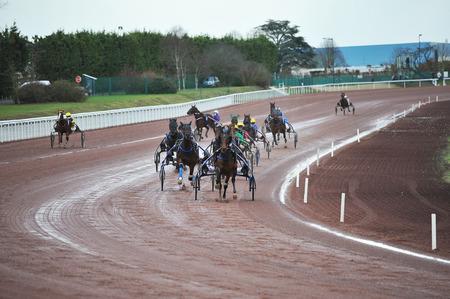horse race in sulky Redactioneel
