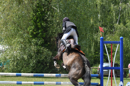 jumping in a horse show Stockfoto - 129583704