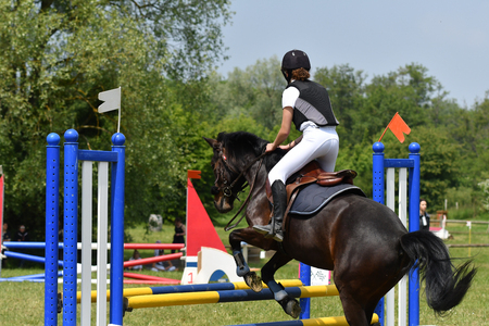 jumping in a horse show Stockfoto - 129583706