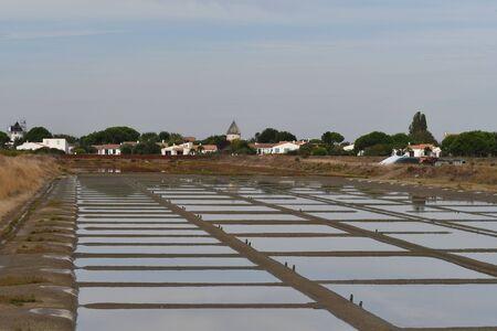salt marsh on the island of Re-France 版權商用圖片 - 134709076