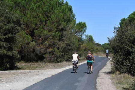 cyclists on a bike path on the island of Re-France