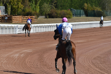 Horse racing on the trot mounted. Redactioneel