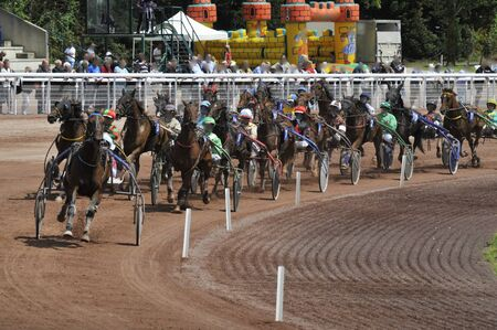 horse racing in harnessed trot