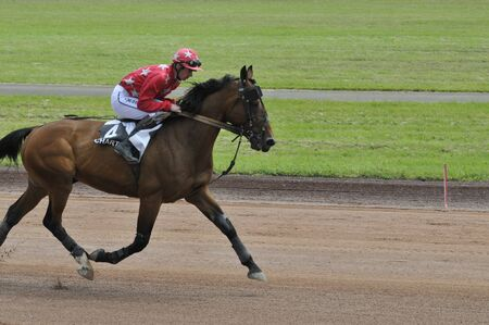 horse race trot mounted Stock Photo
