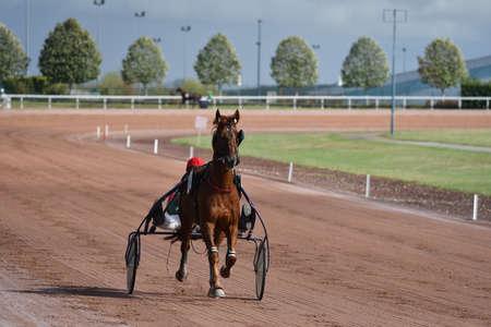 sulky trotting horse race Stock Photo