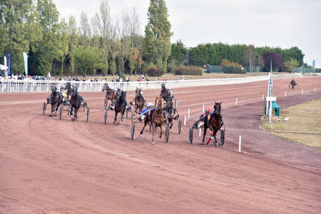 horse race in harnessed trot with sulky