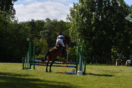 show jumping in a horse show