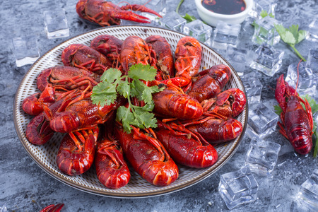Spicy crayfish with ice in a ceramic dish Imagens