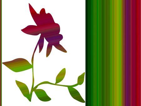 Gradient flower plant