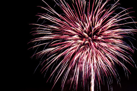 Pink and White Fireworks Banco de Imagens