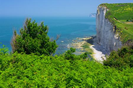 Vaucottes - Cliff