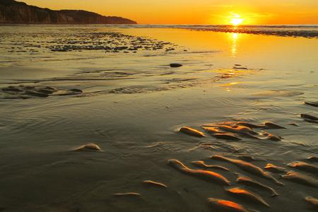 Pourville sur mer - Sunset on low tide